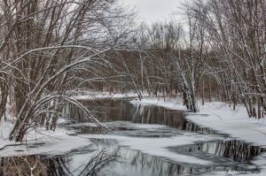 magical winter water reflection.jpg